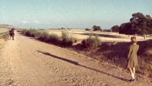 25 10 - Kratke slike - Tras os montes