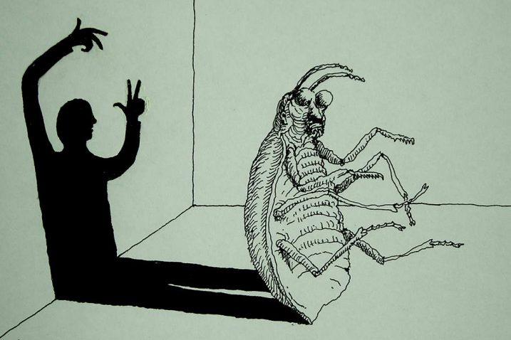 Književnost i film – Franz Kafka: Preobrazba